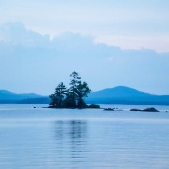 Trees on an island in the middle of Millinocket Lake