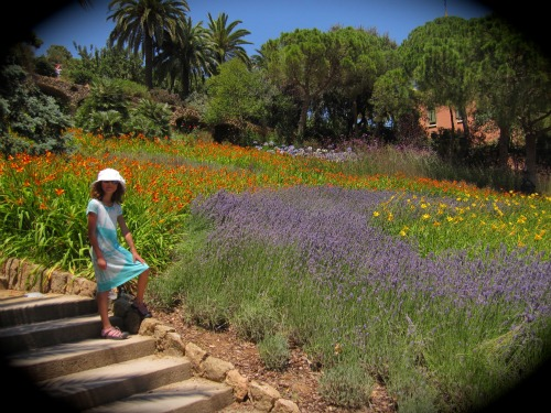 Flowers in Parc Guell | 4 days in Barcelona via We3Travel