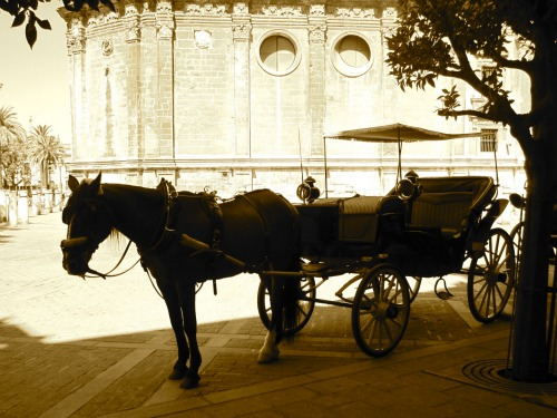 Carriage ride in Seville   What to do in Seville with Kids via We3Travel