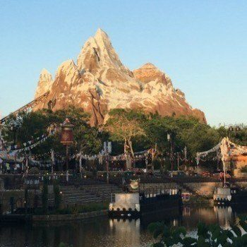 Fine dining in Animal Kingdom in Disney World