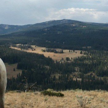 Dude ranch vacations for families