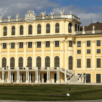 Where to eat in Vienna