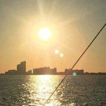 Sunset catamaran with Sail Wild Hearts