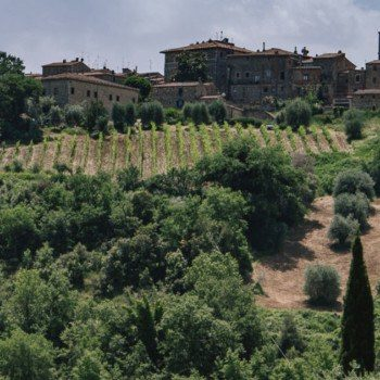Tuscan countryside by Abbey di Sant'Antimo